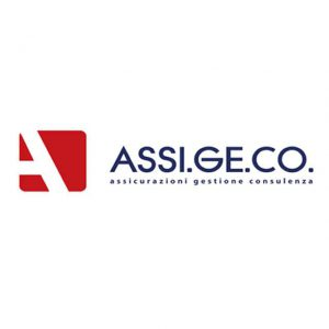 Assi.ge.co. drone insurance