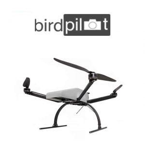 Birdpilot X-4 Multicopter Drone Quadricottero
